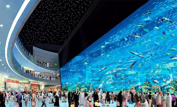 Dubai Mall Beautiful Place to Visit in Dubai at Night