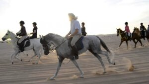 Morning Desert Safari Dubai with Hrose Riding